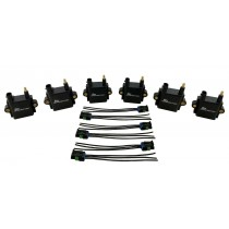 118Mj Inductive Dumb Ignition Coil Pack 6 Cyl for Haltech Fueltech Microtech AEM